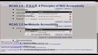 WCAG-WAI Basics