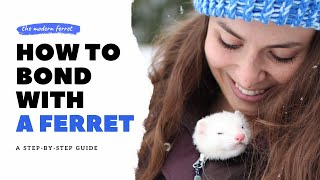 11 FUN Ways to Bond With Your Ferret | Ferret Care