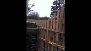 Pallet Shed Part 1