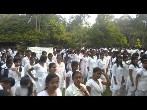 Sadbavana Day at UAS GKVK, Bangalore held on 25.11.2014 - 1
