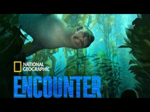 National Geographic Encounter Ocean Odyssey; Don't miss Breathtaking Underwater Journey!