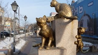 Сквер Сибирских кошек в Тюмени. Россия