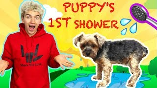 PUPPYS FIRST BATH WITH STEPHEN SHARER & LIZZY SHARER (CUTEST PUPPY SHOWER 🐶💦)