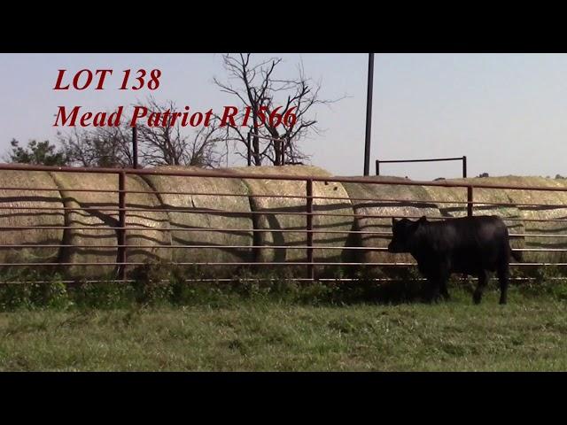 Mead Angus Lot 138