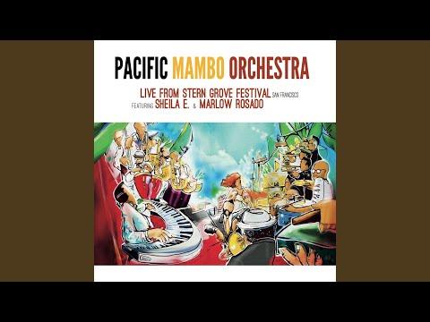 Pacific Mambo Dance No. 2