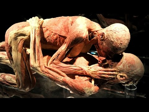 Thumbnail: 10 Disgusting Facts About The Human Body