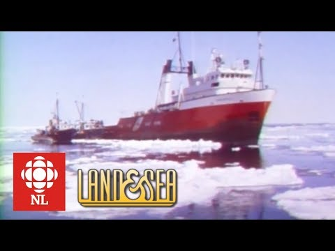 Land & Sea: A rescue aboard the icebreaker The Grenfell