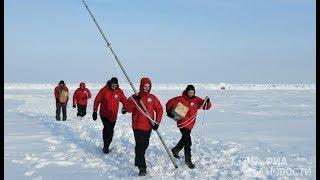 Телемост с полярниками на Всероссийском фестивале науки
