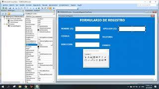 Formularios en Excel con Visual Basic (Creando un Formulario de Registro)