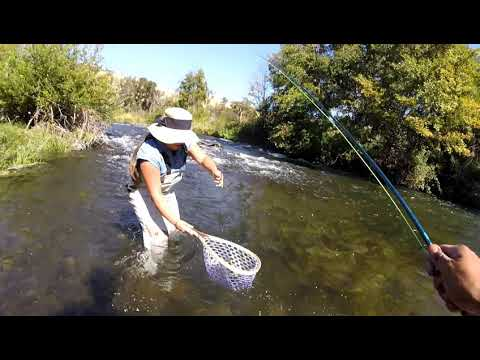 Putah Creek Fly Fishing For Wild Trout