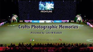Crufts Irish Setter Photographic Memories