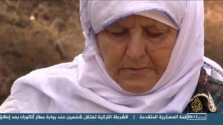 قطاف الزيتون في قلسطين.. احتفاء بالتاريخ