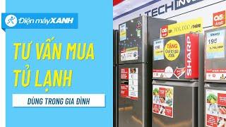 Tư vấn chọn mua tủ lạnh cho gia đình • Điện máy XANH