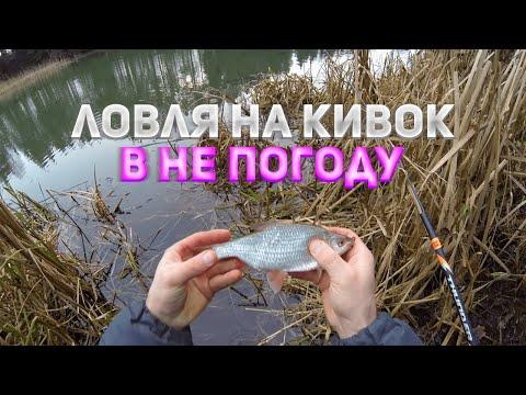 Ловля в непогоду на боковой кивок на озере