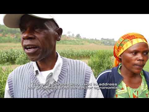 #SocialAcc in Agriculture - bridging the gap between farmers and officials in Rwanda