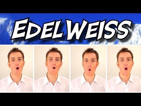 Edelweiss (The Sound Of Music) - A Cappella Barbershop Quartet - Julien Neel