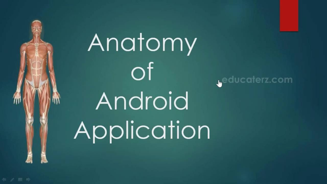 6 Anatomy of Android App - YouTube