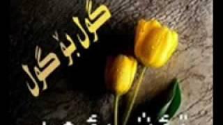 Soroush Safar Gorani Farsi Zor Xosh.flv
