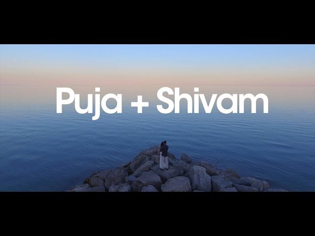 Puja + Shivam | Toronto Hindu Wedding Same Day Edit Video at Verdi Convention Centre