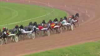 Vidéo de la course PMU PRIX DE L'AUTRICHE