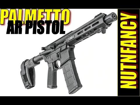 BUNKER REVIEW:  Palmetto Armory PA-15 10
