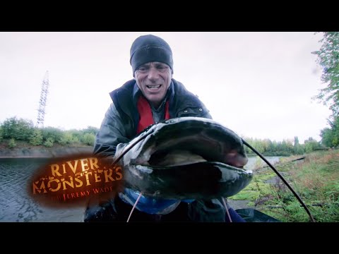 Catching A Mutant Som In Radioactive Chernobyl Waters | SOM | River Monsters