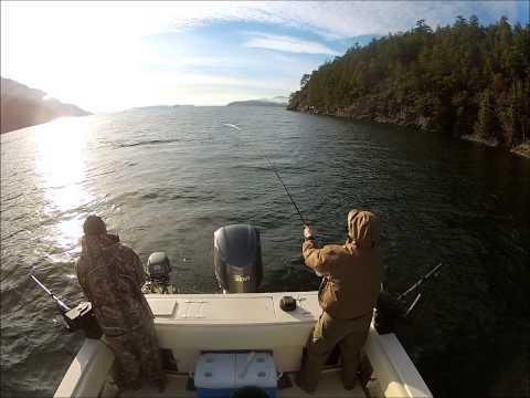 Winter Chinook Salmon Fishing Near Vancouver, Canada