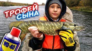 Первый трофей сына Щука на WD40 Ловля щуки на воблеры Рыбалка на щуку Рыбалка осень 2017