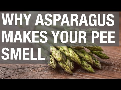Why Asparagus Makes Your Pee Smell