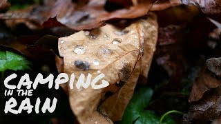 Tent Camping in the rain in Pennsylvania (2018 travel vlog)