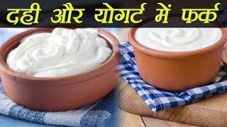 Curd And Yogurt; Here's the difference | दही और योगर्ट में ये है फर्क | Boldsky