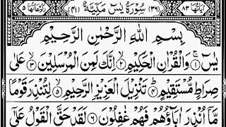 Download Surah Yasin (Yaseen) | By Sheikh Sa'ud Ash-Shuraim | Full With Arabic Text (HD) | سورۃ یس