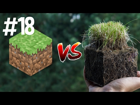 Thumbnail: Minecraft vs Real Life 18
