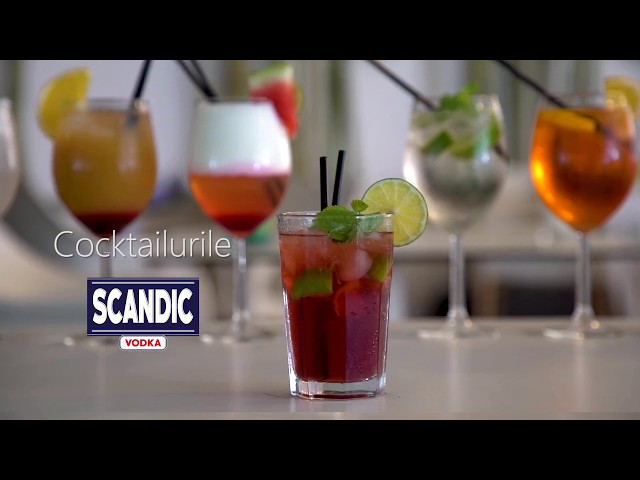 How to make a Bloody Mary cocktail with SCANDIC VODKA