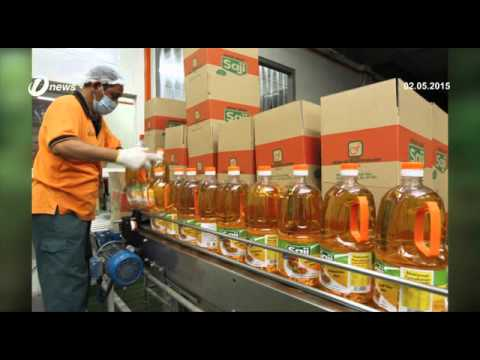 Felda Global Ventures Fgv Continues Search For Oil Palm Plantation Youtube