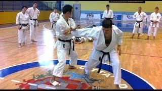 Takashi Yamaguchi Kata & Bunkai Tekki Nidan