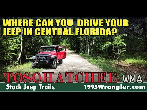 Where To Take A Stock Jeep For A Great Ride. Tosohatchee WMA Florida