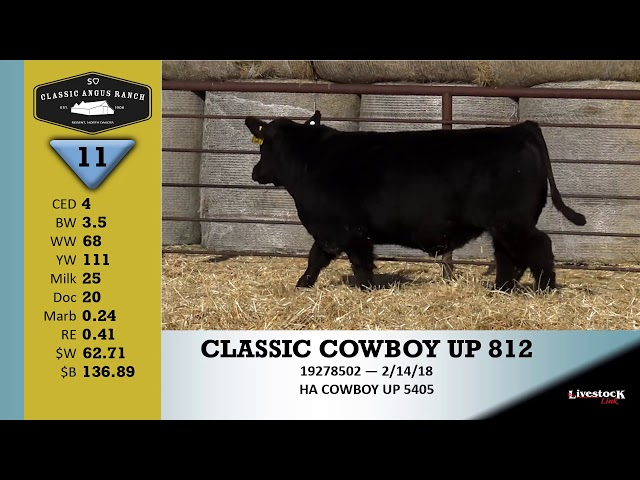 Classic Angus Ranch Lot 11