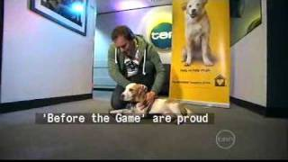 Before The Game - Beagle Rescue Victoria 11th July 2009