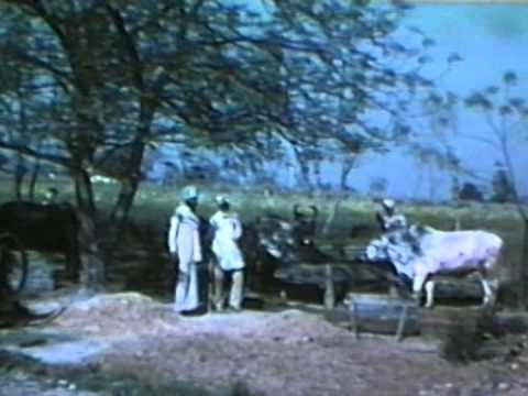 1978 Royal A & India Trip