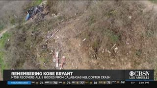 NTSB Releases Video Of Kobe Bryant Calabasas Chopper Crash Investigation, All 9 Bodies Recovered