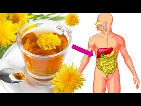 If You Drink Dandelion Tea Everyday Then This Will Happen To Your Body - Dandelion Tea Benefits