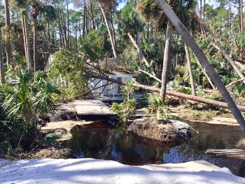 Image Result For Hunting Island State Park Campground Pictures