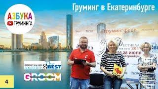 Груминг в Екатеринбурге. Открытие груминг салона - бизнесплан.