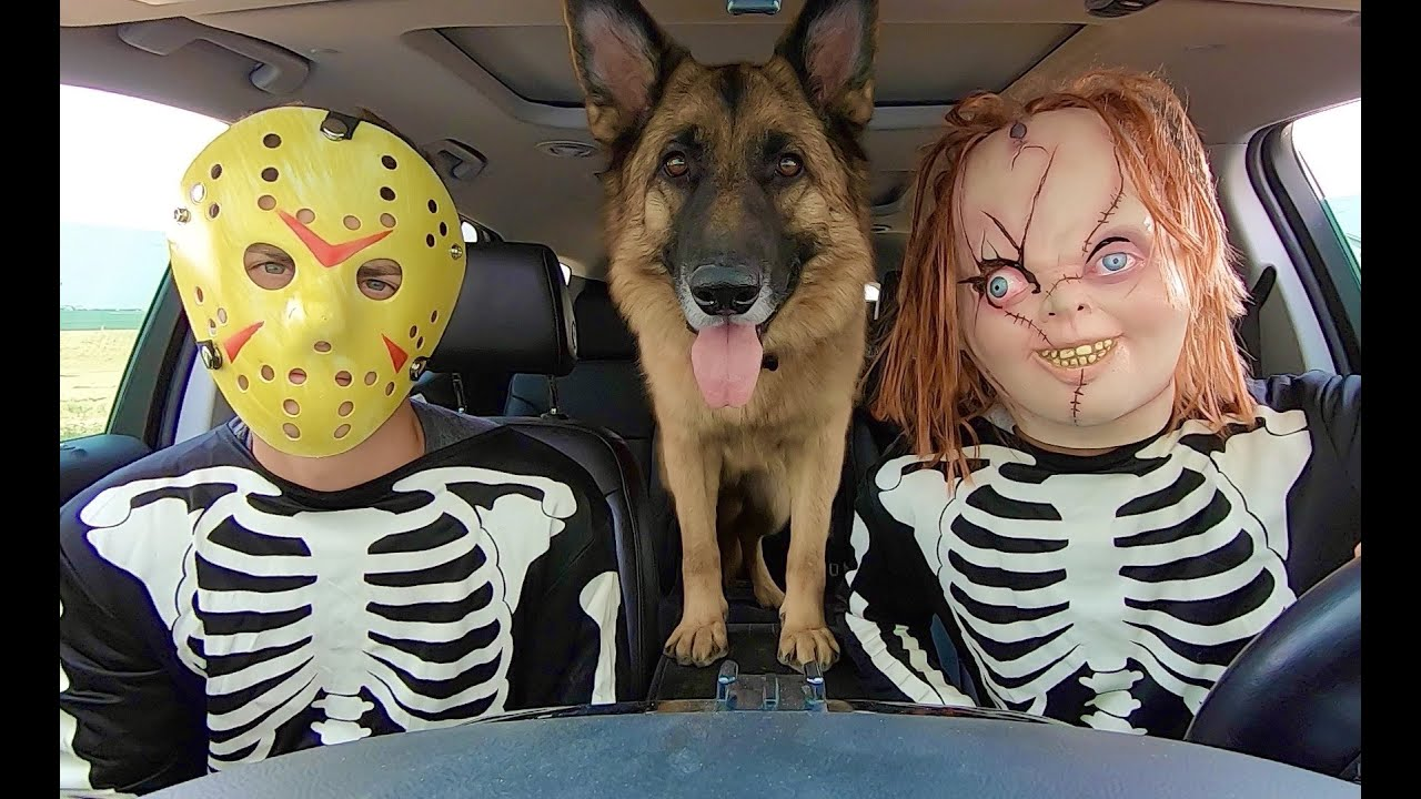 Jason Surprises Chucky & Dog with Car Ride Chase!