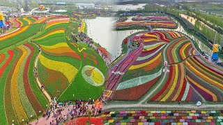 China's Most Beautiful Massive Flower Natures You Can't Imagine