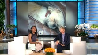 Video Kerry Washington on Her Adorable Dog download MP3, 3GP, MP4, WEBM, AVI, FLV Desember 2017