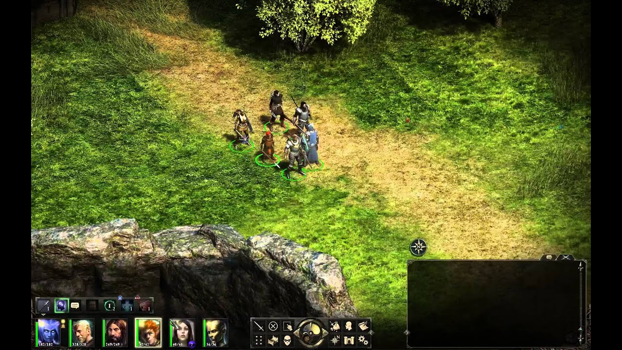 Companion build guide - Pillars of Eternity: General
