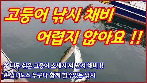고등어 낚시 채비 어렵지 않아요 !! ( Too easy a mackerel float fishing )