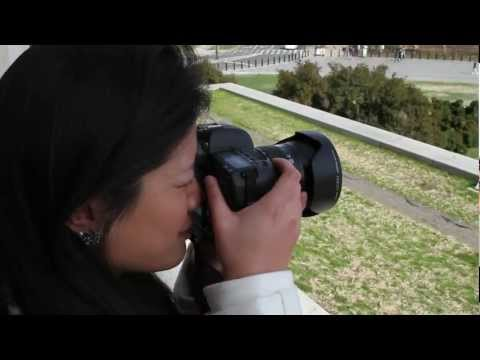 DC Airport Photo Tips: How to Photograph the Lincoln Memorial
